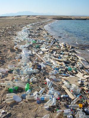 wasser und umweltprobleme
